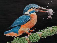 Kingfisher bird wildlife nature A5 Original Painting Pen & Ink Sketch Signed Art