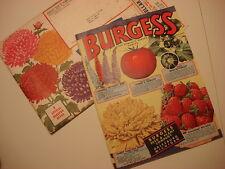 1952 BURGESS SEED & PLANT CATALOG Galesburg, Michigan Flowers/Vegetables