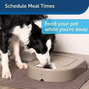 PetSafe 5 Meal Automatic Pet Feeder, 5 Cups Total Capacity
