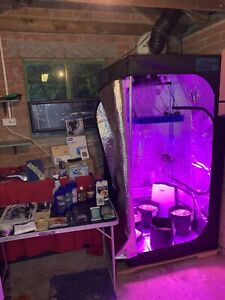 Hydroponic Stealth Grow Box Full Pro Kit Tent Hydroponics Everything You Need