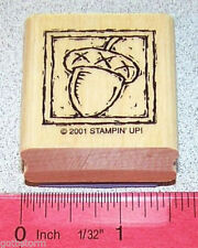 Acorn Nut Single Stamp in Frame with Border by Stampin Up Anytime Greetings