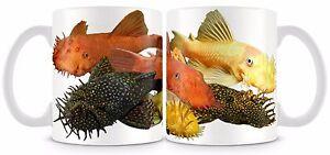 Bristlenose Fish Mug Bushy Nose Plecostomus Plec Pleco Bristle Nose