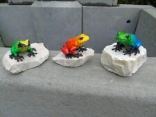 grenouille exotique en bronze pat couleurs sur pierre , lot de 3 pièces !