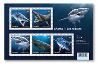 2018 Canada Sharks Souvenir Sheet 5 Stamps Science Sc # 3105 Predator Jaws Fish