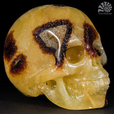 "Gemstone Crystal Skull (Septarian) 2.0"" Hand Carved Reiki Chakra Healing"
