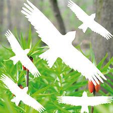 Warnvogel Set Bianco MILAN uccelli warnvögel Adesivo Decorazione Finestra uccelli