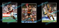 SIMON GOODWIN ADELAIDE CROWS SIGNED PHOTO + 2 PHOTOS
