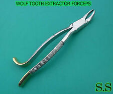 WOLF TOOTH EXTRACTOR FORCEPS DENTAL EQUINE INSTRUMENTS