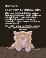 METAL MAGNET Cat Been Good Be Out Of Bed In A Minute Humor Cats MAGNET