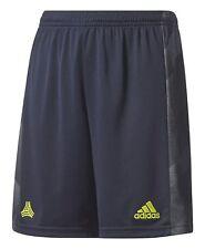 adidas Performance Kinder Fussball Sporthose TANC SHORTS Y climalite blau