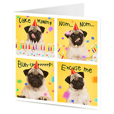 FUNNY avidi Party Pug Dog burping mangiare TORTA COMPLEANNO greeting card