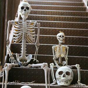 "35.5/90"" Poseable Human Skeleton Life Size Bone Model Halloween Prop Party Decor"