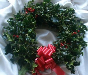"""Fresh Christmas Holly Ring Wreath Decoration 12"""" natural foliage with bow"""