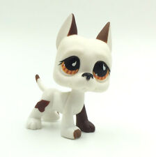 Littlest Pet Shop LPS Toys Figure #750 Brown White Great Dane Dog Rare