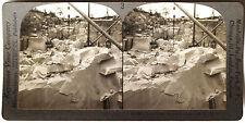 Keystone Stereoview Granite Quarry in Concord, NH Version B 1910s Education Set