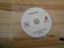 CD Indie Wallis Bird - An Idea About Mary (1 Song) Promo COLUMBIA - disc only !