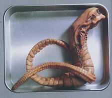 """24""""Alien Chest Burster Sci-Fi Thriller Movies Vinyl Model Kit 1/1"""
