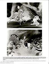 1988 Vintage Photo Still # BABB-2 Bambi Disney movie film thumper skunk Flower