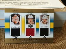 2013-14 Triolgy Star Spotlight Trios #SWE-ROOK  Fasth Brodin Rackell