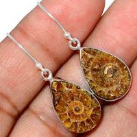 """Fossil"" Ammonite - Madagascar 925 Sterling Silver Earrings Jewelry AE184648 XGB"
