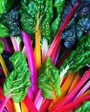 30 RAINBOW SWISS CHARD SEEDS HEIRLOOM 2018 (non-gmo heirloom vegetable seed)
