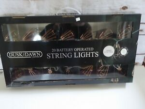 Dusk Till Dawn 20 Battery op. indoor/outdoor string lights copper cage shades