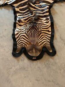 Vintage Taxedermy Zebra