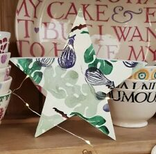 Emma Bridgewater themed Large Freestanding Christmas star Figs