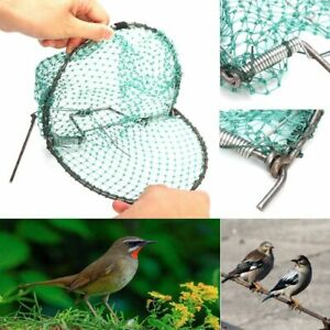 Heavy Duty Bird Net Effective Humane Live Trap Hunting Sensitive Quail Humane
