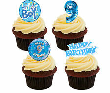 9th Birthday Boy, Edible Cupcake Toppers, Stand-up Bun Fairy Cake Decorations