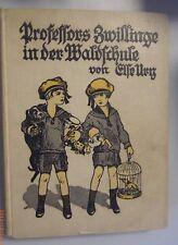 Professors Zwillinge in der Waldschule * Else Ury *Jugendgeschichte Band 2 1925?
