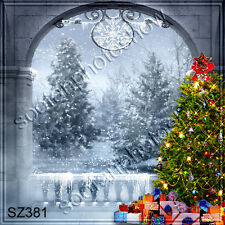 Christmas 10'x10' Computer-painted Scenic Photo Background Backdrop SZ381B11