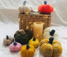 EASY KNIT PUMPKIN AUTUMN HOME CHRISTMAS DECORATION LAMINATED KNITTING PATTERN