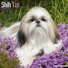 Shih Tzu Calendar 2021 Premium Dog Breed Calendars