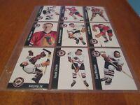 1993-94 Parkhurst Missing Link CHICAGO BLACKHAWKS completed set (23 cards)
