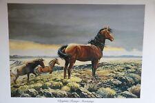 "Equestrian Ltd. Ed., ""Virginia Range Wild Mustangs"" litho. By Fred Boyce - 501c3"