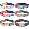 Blue Green Personalized Dog Nylon Collar Engraved Pet Name Small Medium Large XS