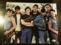 The Outsiders 11x14 Signed By Emilio Estevez, Thomas Howell, and Ralph Macchio.