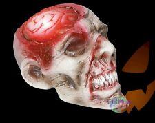 New Rotten Haunted Skull Light up Brain Halloween Prop