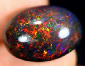 12.40ct Black Welo Opal! Multi Fire Peacock Harlequin Pattern Natural Black Opal