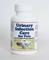 URINARY INFECTION CARE FOR PETS (100 Capsules - Made in USA) Dogs and cats