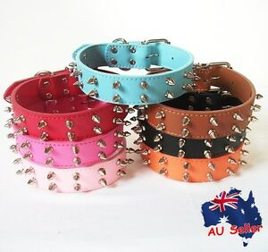 Genuine Real Leather Spiked Studded Riverts Pet Dog Collar