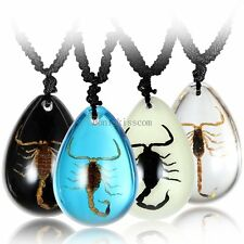 Men's Womens Amber Insect  Scorpion Teardrop Pendant Necklace w Black Cord Chain