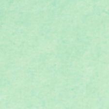 Suttons Envoltura de menta 70x50cm - 10 hojas de papel de tejido