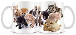 Cute Kitten Mug , 11oz cat mug