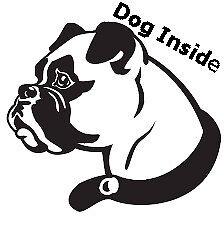 NUOVO cane all'interno auto adesivo divertenti novità/Home/finestra/Paraurti/ideale per gli amanti del cane