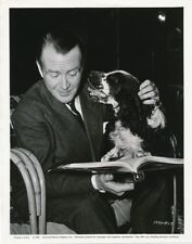 JOHN MILLS Springer Spaniel Dog CANDID Universal Studio Set CHALK GARDEN Photo