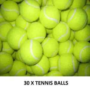30 NEW TENNIS BALLS BRIGHT GREEN CRICKET  DOG TOYS BEACH