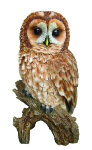 Vivid Arts | Tawny Owl | Highly Detailed Frost Resistant Resin Home or Garden...