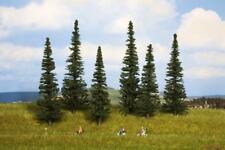 Tannen 6 Bäume 16 - 20cm Noch 24255